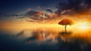 Preview wallpaper tree, horizon, sunset, photoshop, sea