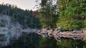 Preview wallpaper trees, coast, lake, reflection, nature