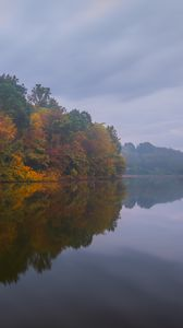 Preview wallpaper trees, forest, lake, fog, autumn, nature