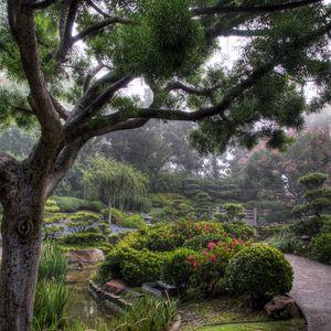Preview wallpaper trees, path, haze, garden, bushes