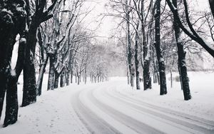 Preview wallpaper trees, road, turn, winter, snow