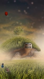 Preview wallpaper turtle, photoshop, child, bicycle, field, grass