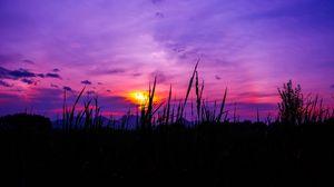 Preview wallpaper twilight, grass, sky