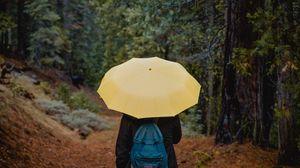 Preview wallpaper umbrella, person, walk