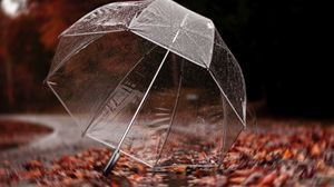 Preview wallpaper umbrella, autumn, rain, foliage