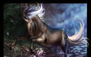 Preview wallpaper unicorn, hoofs, water, splashes