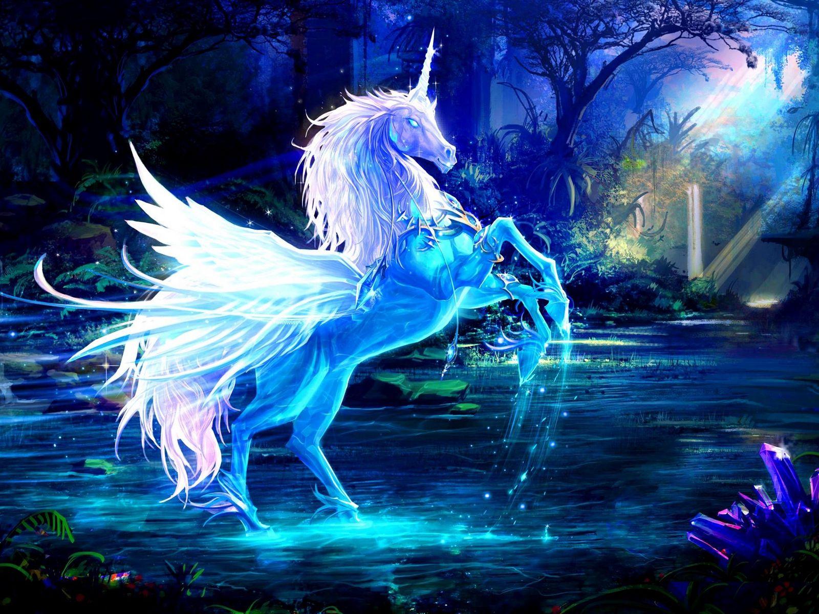 1600x1200 Wallpaper unicorn, water, forest, night, magic