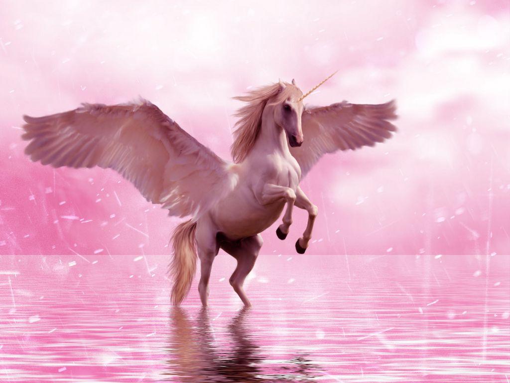 1024x768 Wallpaper unicorn, wings, horse, fantasy
