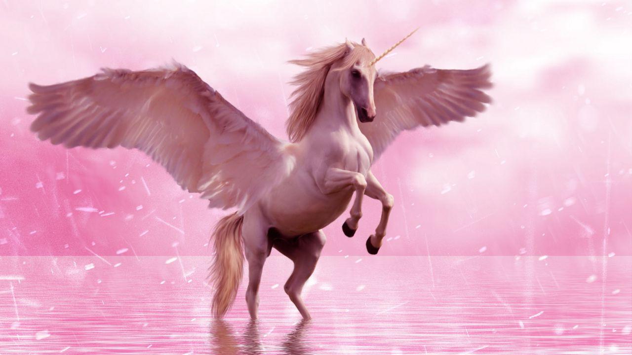 1280x720 Wallpaper unicorn, wings, horse, fantasy