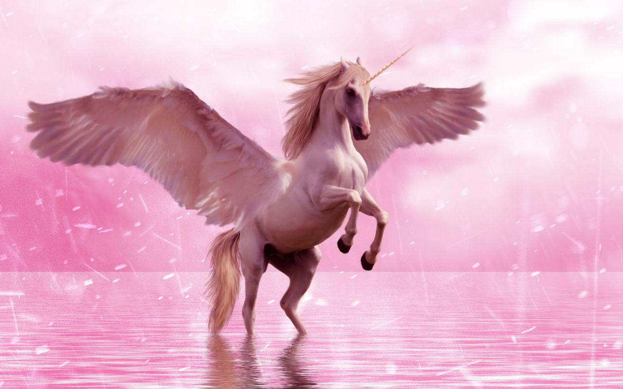 1280x800 Wallpaper unicorn, wings, horse, fantasy