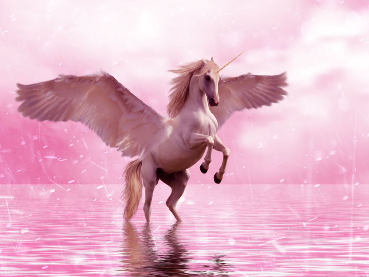 1280x960 Wallpaper unicorn, wings, horse, fantasy