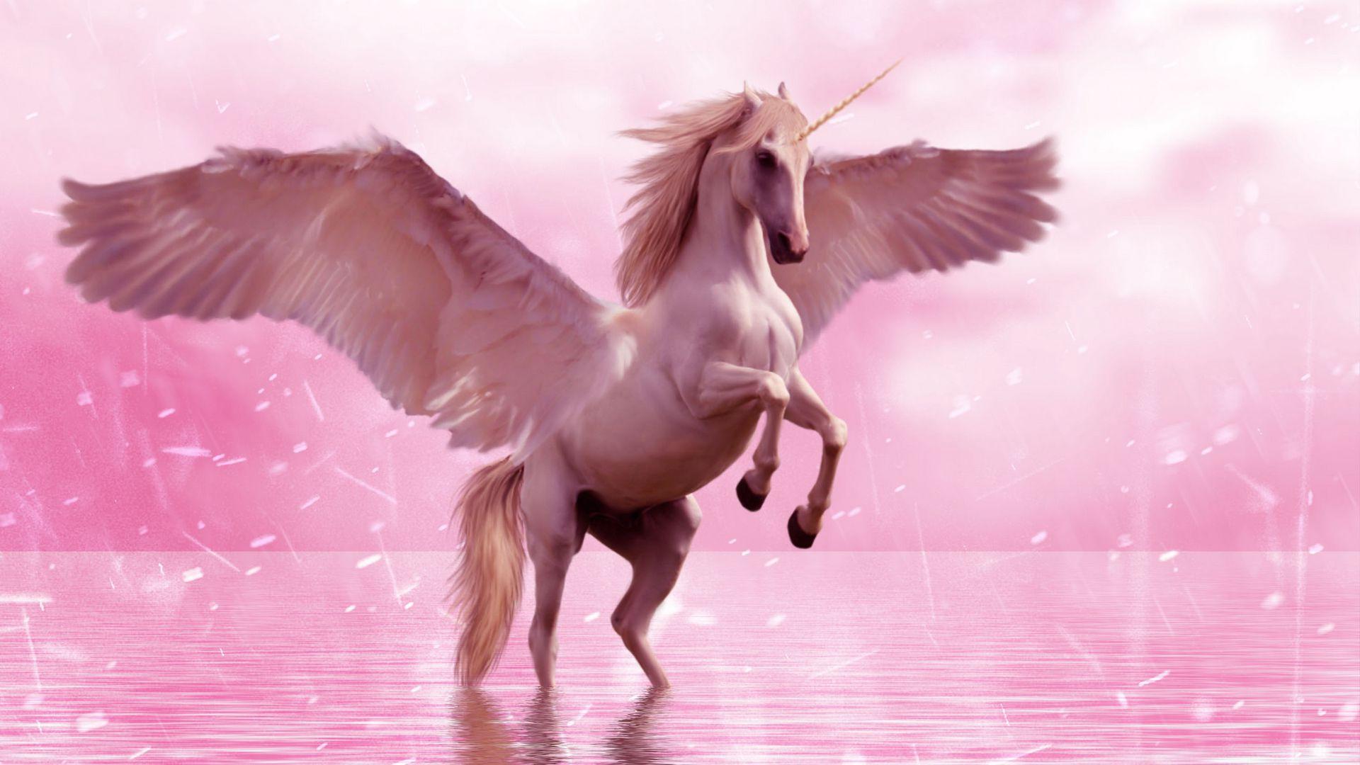 1920x1080 Wallpaper unicorn, wings, horse, fantasy