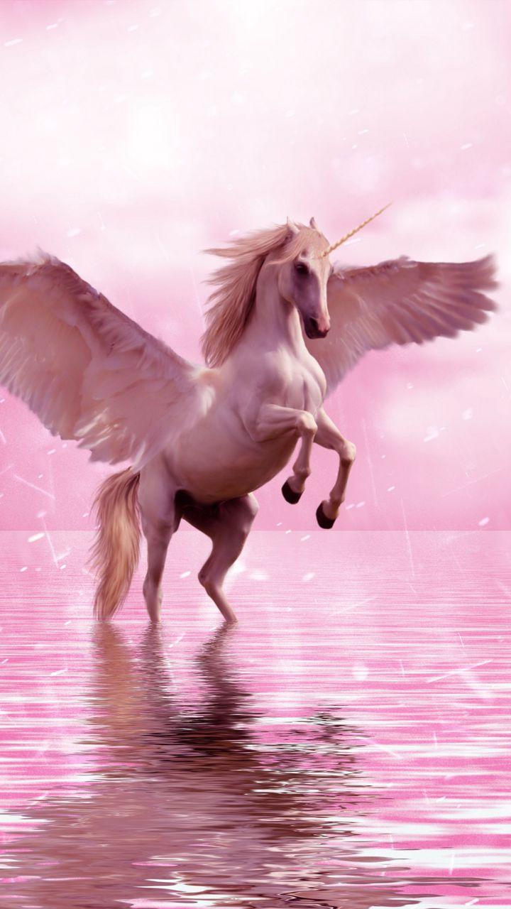 720x1280 Wallpaper unicorn, wings, horse, fantasy