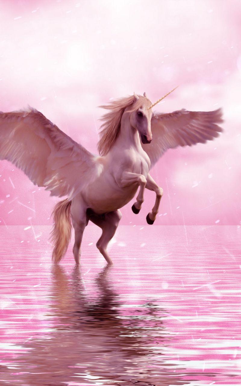 800x1280 Wallpaper unicorn, wings, horse, fantasy