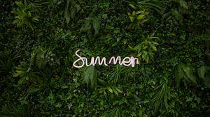 Preview wallpaper summer, vegetation, inscription, plants, greenery