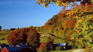 Preview wallpaper village, autumn, houses, trees, meadows