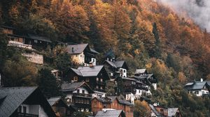 Preview wallpaper village, houses, mountain, slope, trees