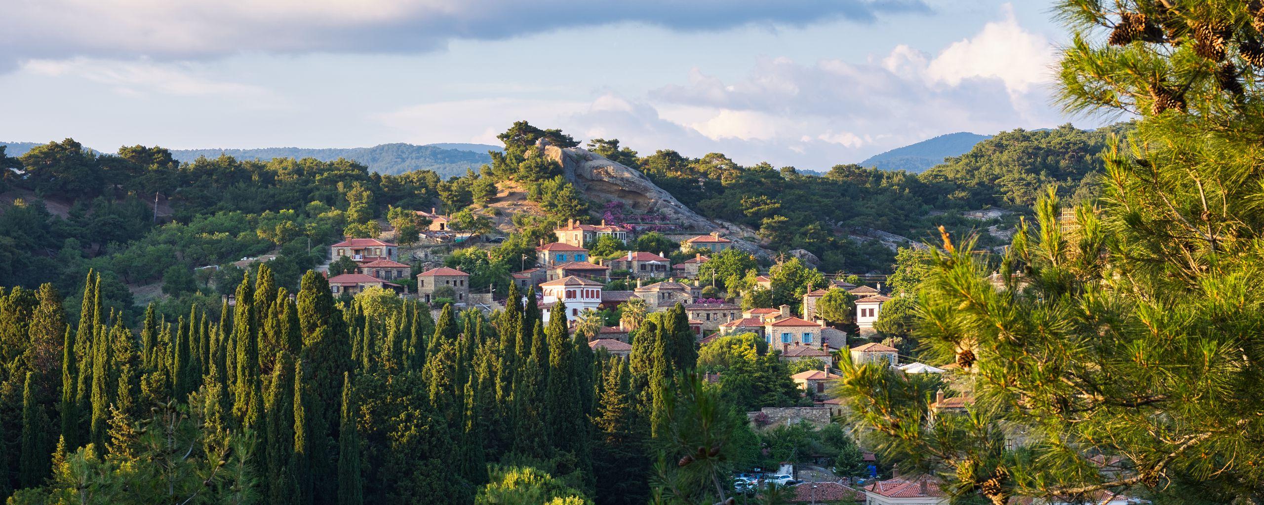 2560x1024 Wallpaper village, mountain, buildings, trees