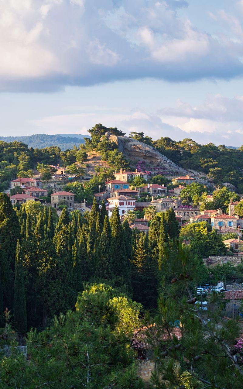 800x1280 Wallpaper village, mountain, buildings, trees