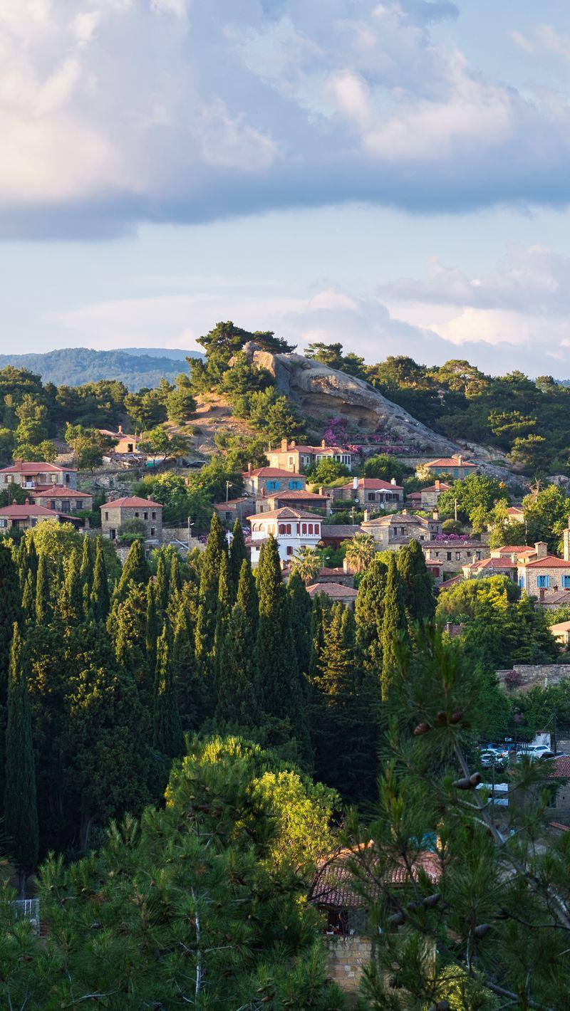 800x1420 Wallpaper village, mountain, buildings, trees
