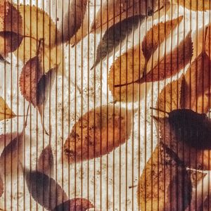 Preview wallpaper wall, stripes, leaves, autumn, texture