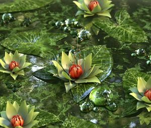 Preview wallpaper water lily, lotus, flower, green