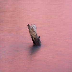 Preview wallpaper water, log, pink, minimalism, nature
