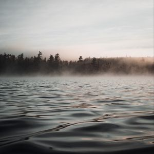 Preview wallpaper water, waves, fog, trees, twilight