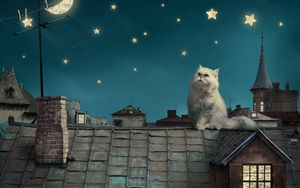 Preview wallpaper white persian cat, kitten, fairy tale, fantasy, roofs, houses, sky, night, stars, moon