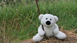Preview wallpaper white, toy, teddy bear, mood, walk, hay, grass