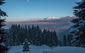 Preview wallpaper winter, mountains, snow, trees, twilight