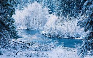 Preview wallpaper winter, river, snow, trees, landscape