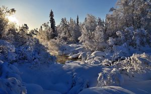 Preview wallpaper winter, river, steam, trees, snow