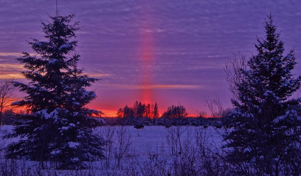 1024x600 Wallpaper winter, sunset, field, landscape