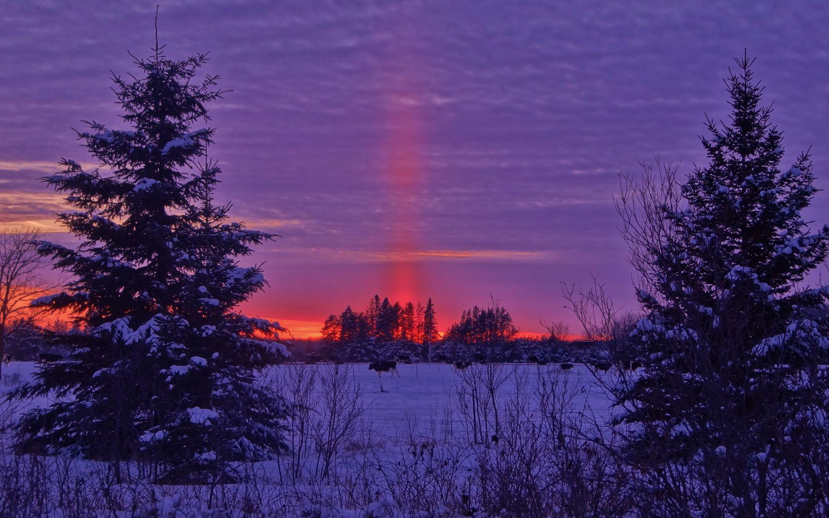 1680x1050 Wallpaper winter, sunset, field, landscape