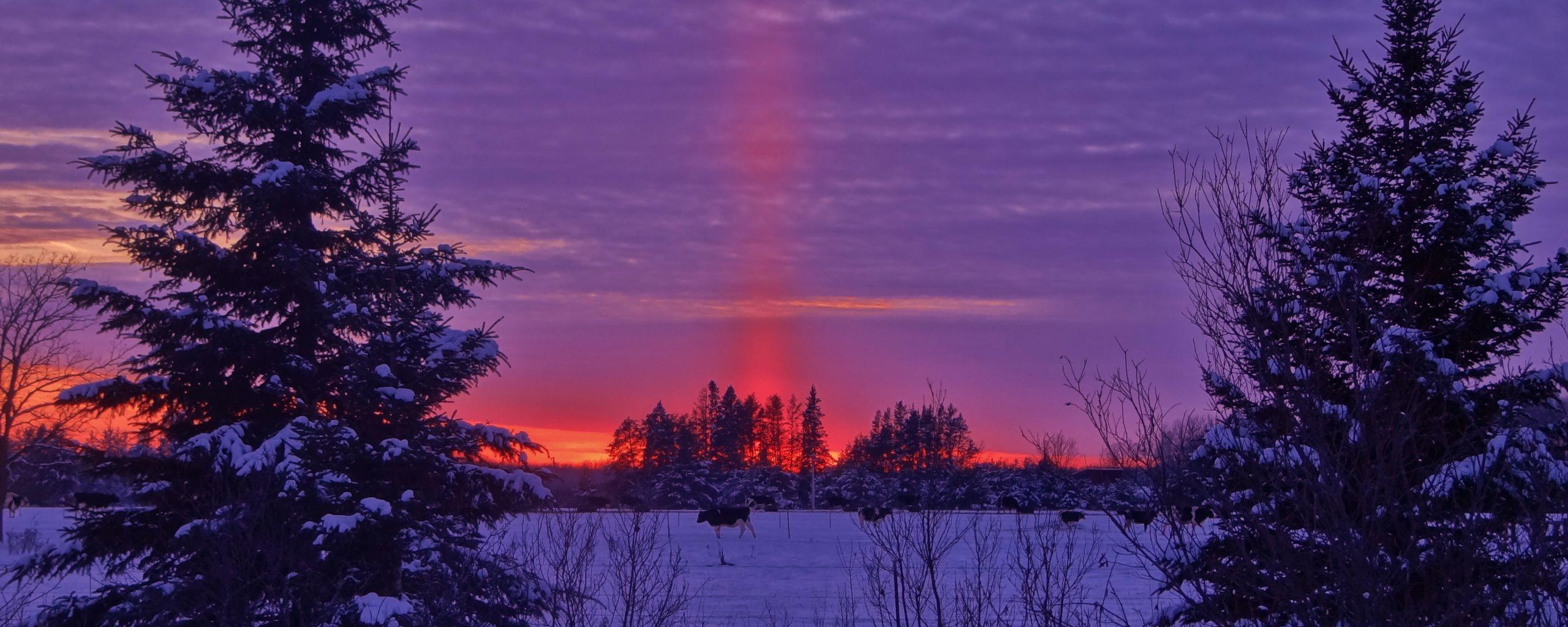 2560x1024 Wallpaper winter, sunset, field, landscape