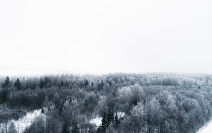 Preview wallpaper winter, trees, aerial view, minimalism, white