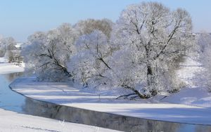 Preview wallpaper winter, trees, river, hoarfrost, gray hair, sky, white, shadows