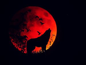 Preview wallpaper wolf, howl, silhouette, full moon, fire moon