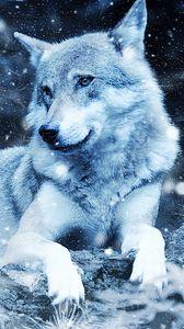 Preview wallpaper wolf, photoshop, predator, wildlife