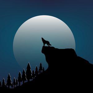 Preview wallpaper wolf, rock, moon, vector, art, dark