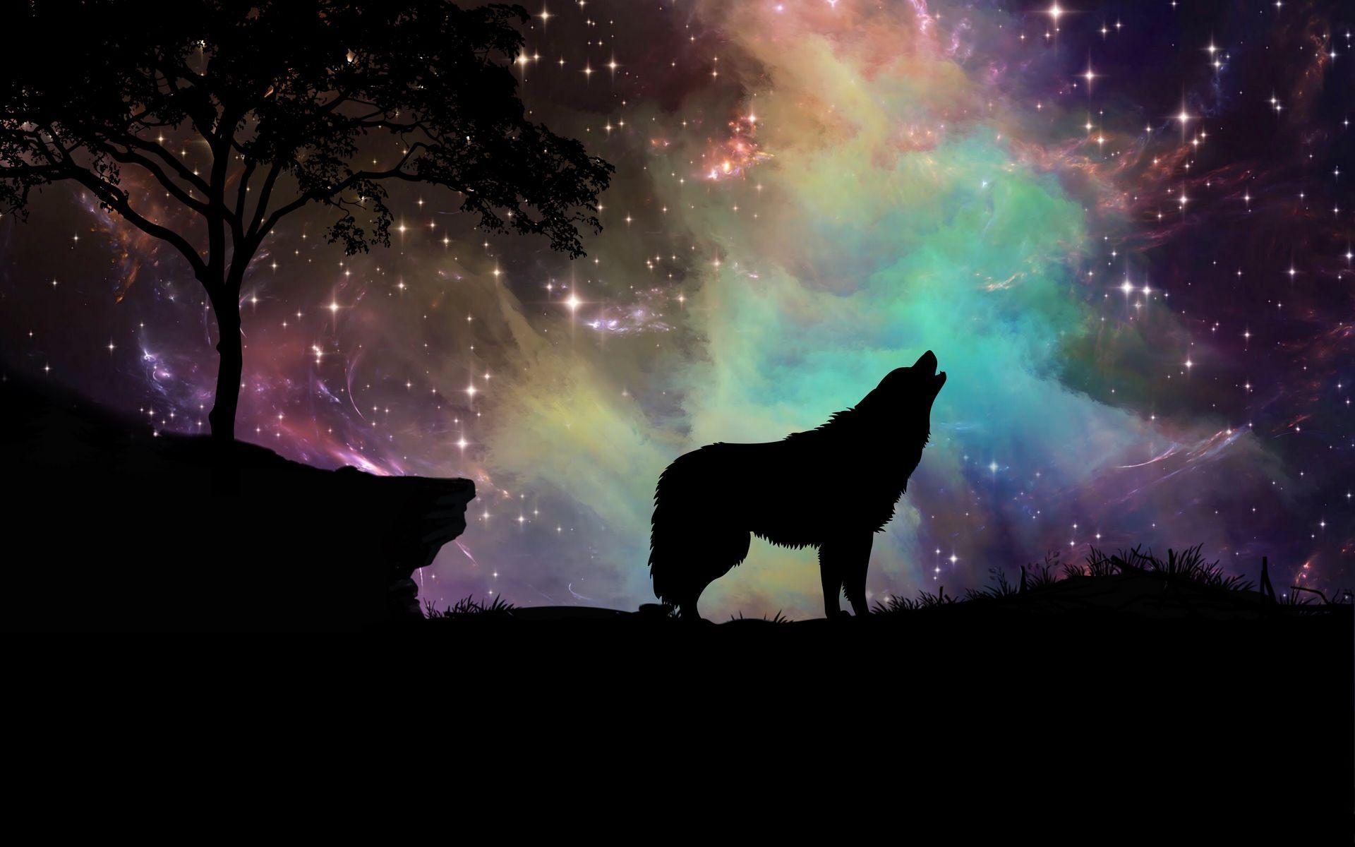 1920x1200 Wallpaper wolf, starry sky, silhouette, art
