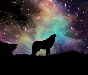Preview wallpaper wolf, starry sky, silhouette, art
