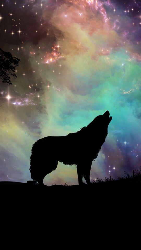 540x960 Wallpaper wolf, starry sky, silhouette, art