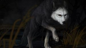 Preview wallpaper wolf, water, darkness, art
