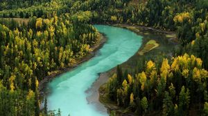 Preview wallpaper wood, autumn, river, bends, blue water, mountains