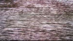 Preview wallpaper wood, dry, texture