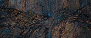 Preview wallpaper wood, surface, texture, wet