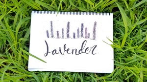 Preview wallpaper word, inscription, notebook, grass