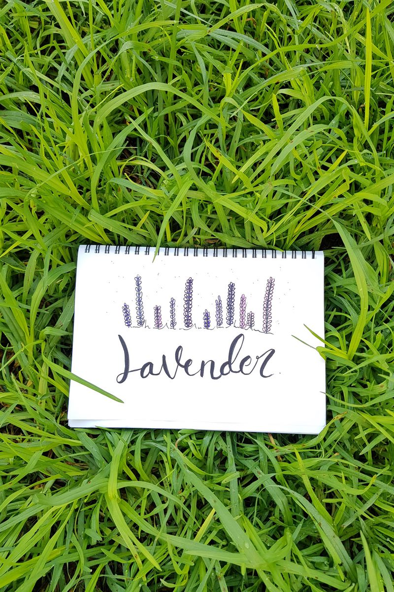 800x1200 Wallpaper word, inscription, notebook, grass